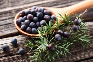 Gin: juniper berry